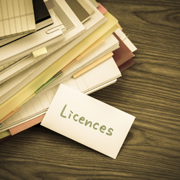 Monthly User Licences